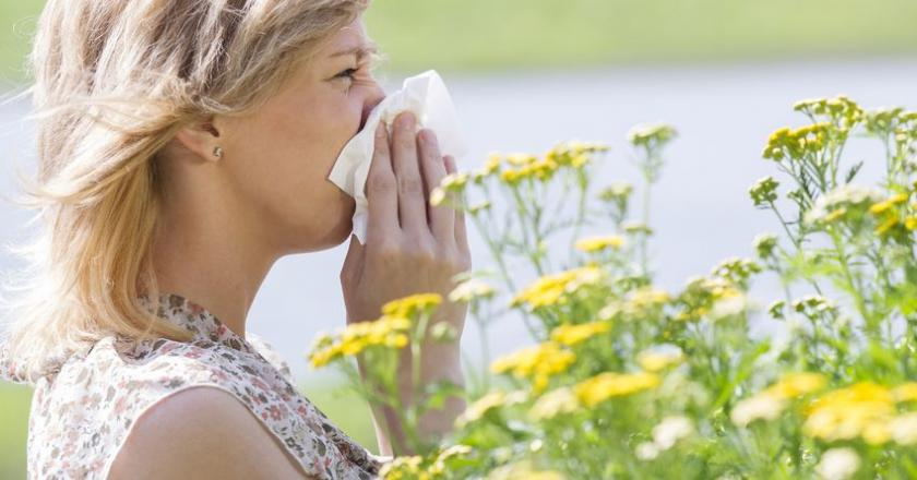 Аллергия на пыльцу - причины, симптомы, диагностика и лечение