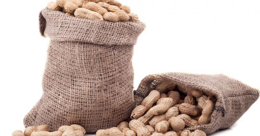 Аллергия на арахис - причины, симптомы, диагностика и лечение