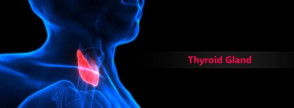 Лечение радиоактивным йодом для щитовидной железы