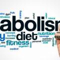 Метаболическое окно: что это такое и как им воспользоваться