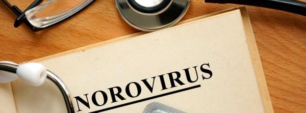 Что такое норовирус?