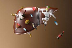 Анализ крови для контроля функции печени