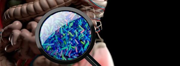СИБР или избыточный бактериальный рост в тонком кишечнике