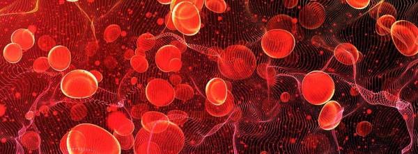 Что такое моноклональные гаммопатии или заболевания?