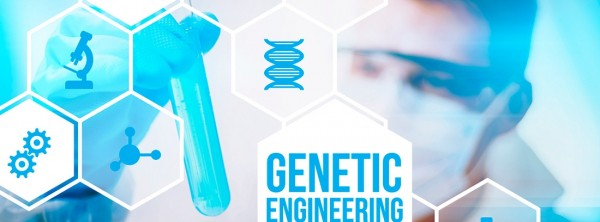 Преимплантационная генетическая диагностика