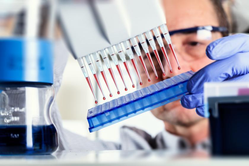 Исследование соотношения лейкоцитов