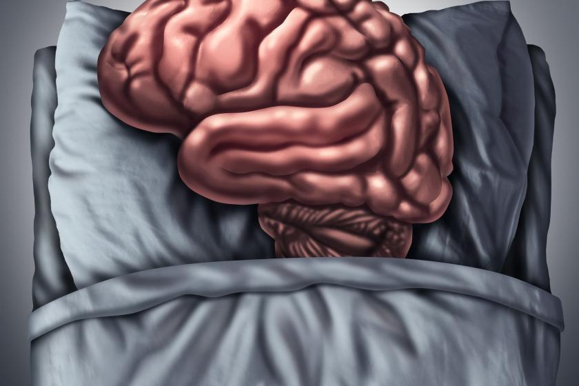 Мозг, лежа в постели