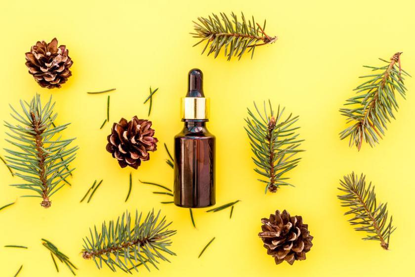 Сосновое масло можно использовать при ингаляции носовых пазух