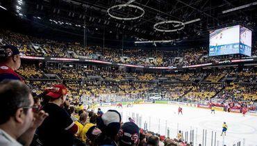 Что нужно, чтобы с удовольствием смотреть хоккей? Ответ ниже.
