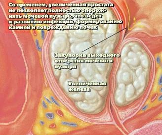 http://www.mgkod.by/images/novosti/predstatzhelezi2.jpg