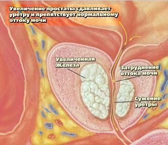 http://www.mgkod.by/images/novosti/predstatzhelezi3.jpg