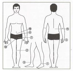 https://chineseplaster.ru/wp-content/uploads/2016/03/kak-nakleit-plasty-r-pri-prostatite-300x294.jpg